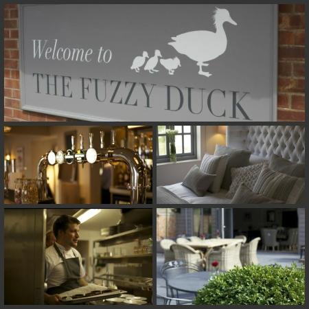 The Fuzzy Duck Armscote