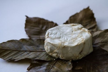 Banon cheese wrapped in chestnut leaves
