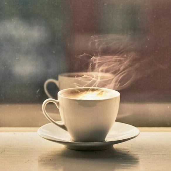Cortado coffee shop Warwick.jpg