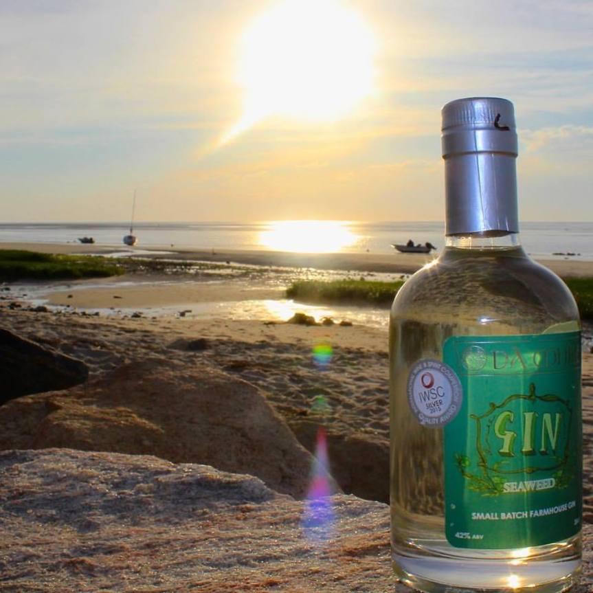 Da Mhile seaweed gin.jpg